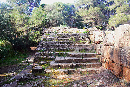 Escalier du Forum 2