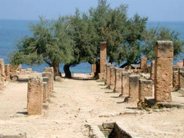 Cardo maximus dans les ruines de Tipasa