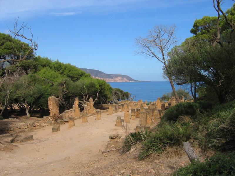 Tipaza_-_ruines_romaines.