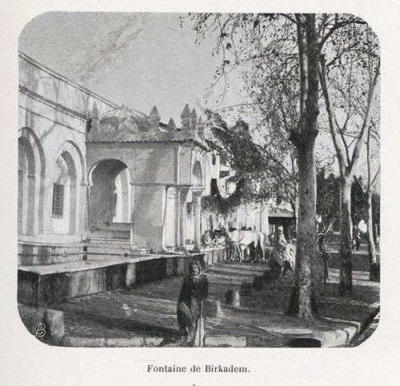image from www.tsa-algerie.com